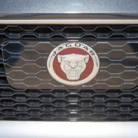 Jaguar Rover -453
