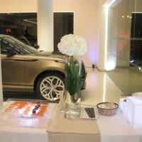 Jaguar - Land Rover Tzortzis_04