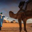 """Τα pickup και SUV της Nissan """"δαμάζουν"""" την έρημο Σαχάρα (Video)"""
