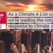 Παγκόσμιος ηγέτης στην εταιρική κλιματική δράση ο Όμιλος PSA
